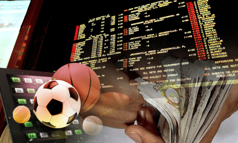 What to look for in a Betting site - The Citizen